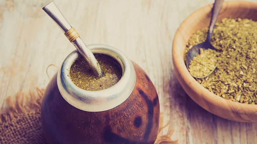 Yerba Mate: the Spirit of Uruguay lives in UPM Forestal Oriental's natural forests