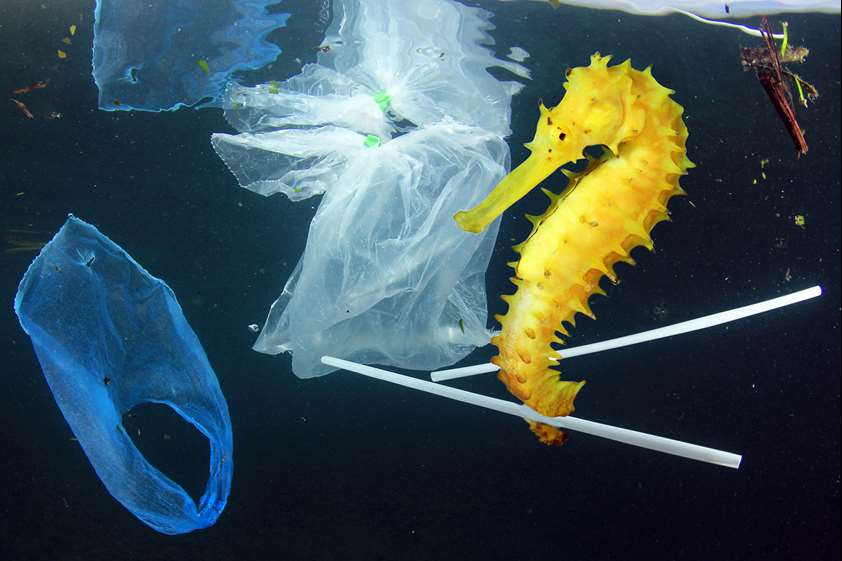 EU aims to change the plastic tide